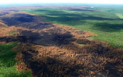 World on Fire: Siberia Forest Burning Up Too