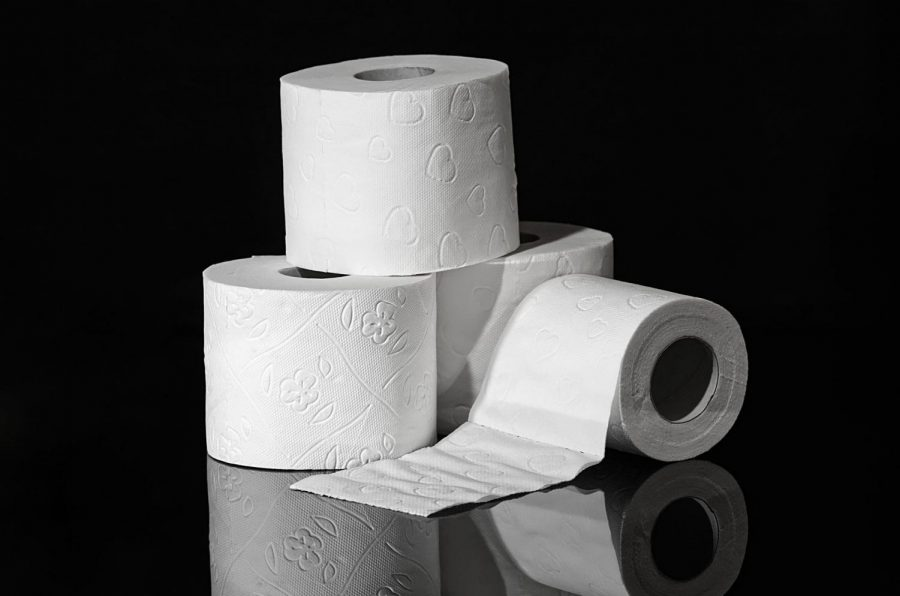 Do We Really Need Toilet Paper???