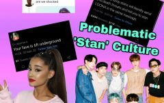Problematic 'Stan' Culture